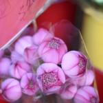 flower-market_16